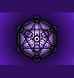 Alchemy mandala metatrons cube flower life vector