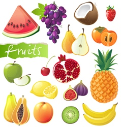 GREAT fruits set vector image vector image