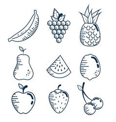 Set fresh fruits handmade drawn vector