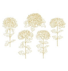 Set of one-colored outlined chrysanthemum vector image