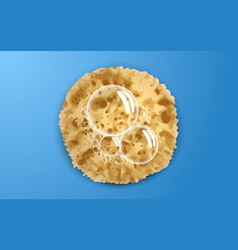 soap bubble on sponge concept background vector image