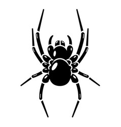 spider icon simple style vector image