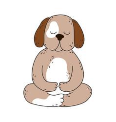 brown dog sitting and meditating in lotus pose vector image