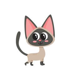 cartoon siamese funny cat vector image
