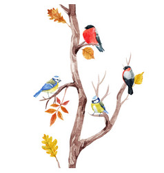 fall trees and birds pattern vector image