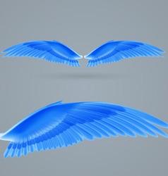 Inspire wings vector image