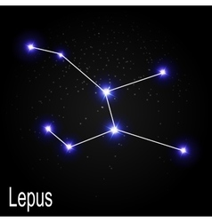 Lepus Constellation with Beautiful Bright Stars on vector