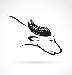 on white background buffalo vector image