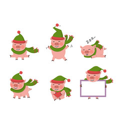 pig set isolated vector image