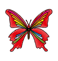 Scribble butterfly cartoon vector