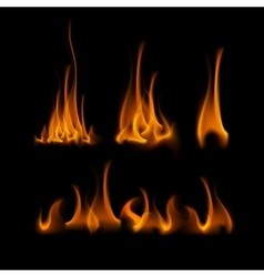 Set of Different Yellow Orange Fire Flame Bonfire vector