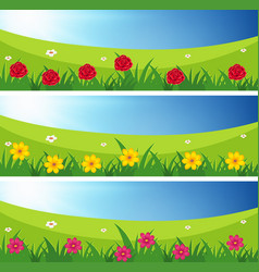 three scenes of fields with flowers vector image
