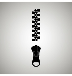 zipper isolated design vector image