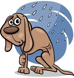 homeless dog cartoon vector image
