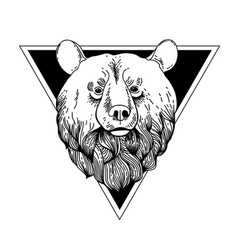 bear hand drawn graphic vector image vector image