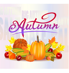 Autumn foliage sale banner vector