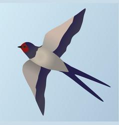 Barn swallow vector