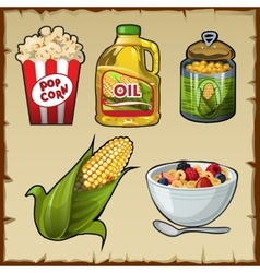 Corn and corn products five varieties of food vector