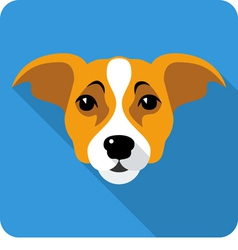 dog Jack Russell Terrier icon flat design vector image