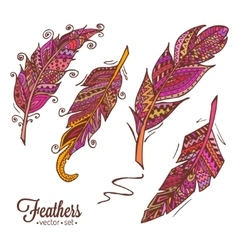 hand drawn feathers 2 vector image
