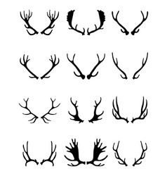 silhouettes of different deer horns vector image