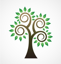 Spiral tree image ilogo vector