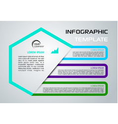 Modern infographics with colorful element vector