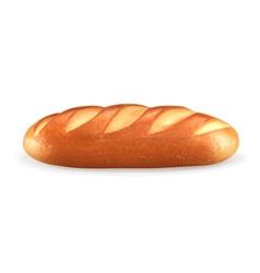 Loaf vector