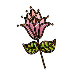 scribble flower cartoon vector image