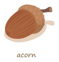 acorn icon isometric 3d style vector image