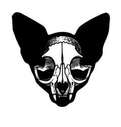 tattoo skull of a cat vector image vector image