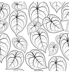 Anthurium tailflower flamingo flower leaves vector