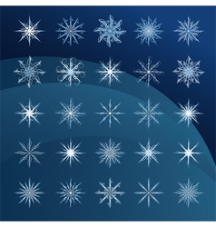 elegant snowflakes complex pattern vector image