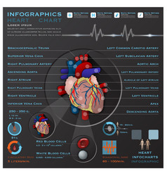 Heart And Blood System Medical Infographic vector