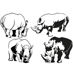 Rhinoceros Tattoo Drawings vector