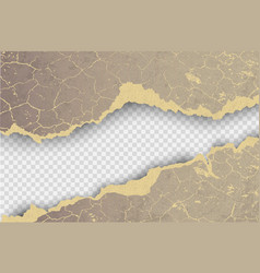transparent design ripped templates torn paper vector image