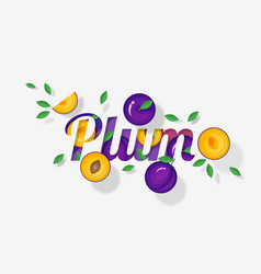 word plum design in paper art style vector image