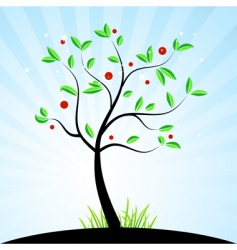 tree with berries vector image