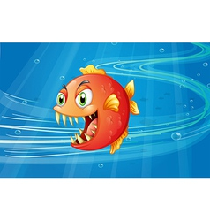 A red piranha under the sea vector image