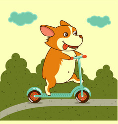 cute dog on kick scooter vector image