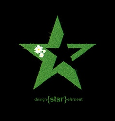 Green Grass Star with flowers design element vector image