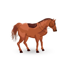 horse isolated detailed animal vector image