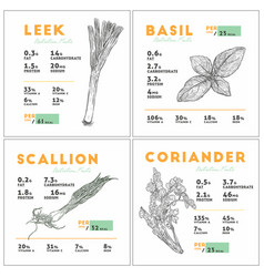 nutrition facts of leek basil scallion and vector image