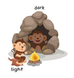Opposite light and dark vector