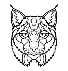 Wildcat lynx mascot head isolated sketch line art vector image