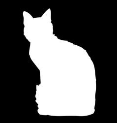 cute cat sitting i black vector image