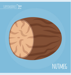 nutmeg flat design icon vector image
