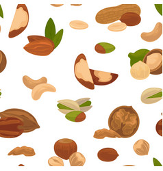 nuts seamless pattern organic food and nutrition vector image