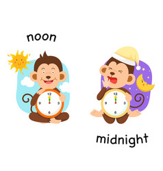 Opposite noon and midnight vector