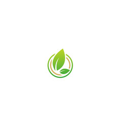 organic green leaf sign nature logo vector image